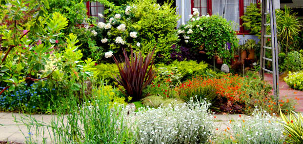 east bay landscaping